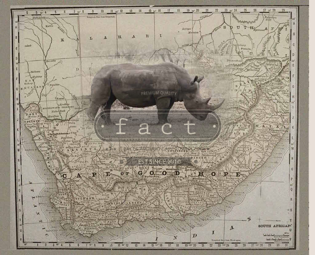 Rhino SA Map